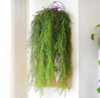 10 шт. висит искусственной хвои листьев винограда из ротанга Уиллоу стены цветок Ivy гирлянда для свадьбы Офис бар декоративные
