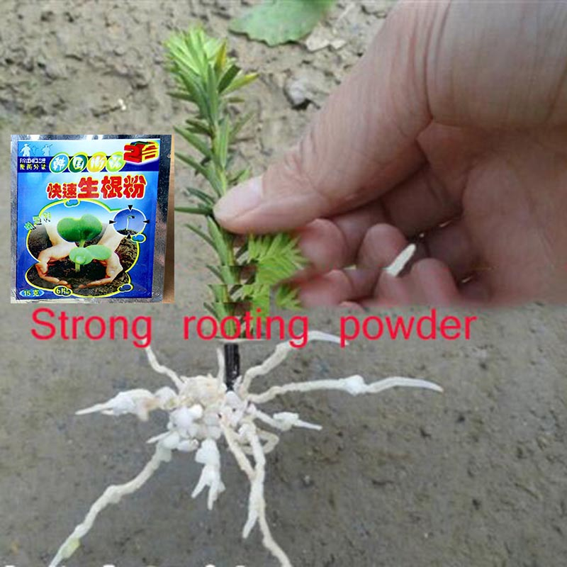 2pcs Flower Strong Rooting Powder Growing Roots Seedling Strong Recovery Root Vigor Germination Aid Fertilizer Garden Medicine