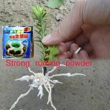 2 шт. цветок сильный порошок для укоренения выращивание корней саженец сильное восстановление корень vigor прорастание помощи удобрения сад медицина