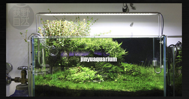 Chihiros a plus series ada style plant grow led light for Above water fish tank
