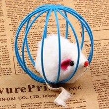 Играя ложь крысы клетке бал котенок домашних забавный мышь популярные кошка