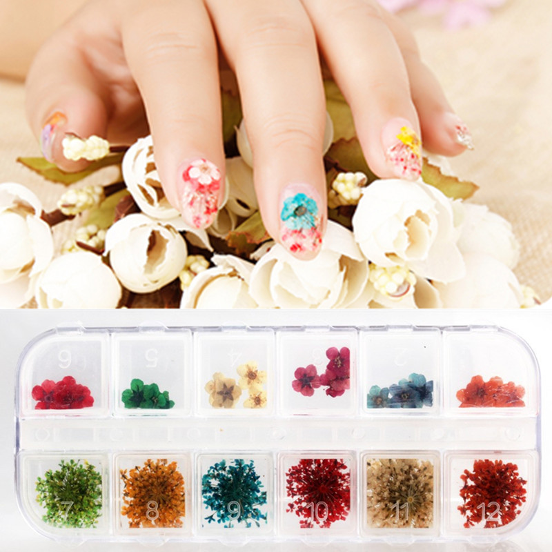 Candy Lover Nail Art Decorations Real Dry Dried Flowers For UV Gel ...