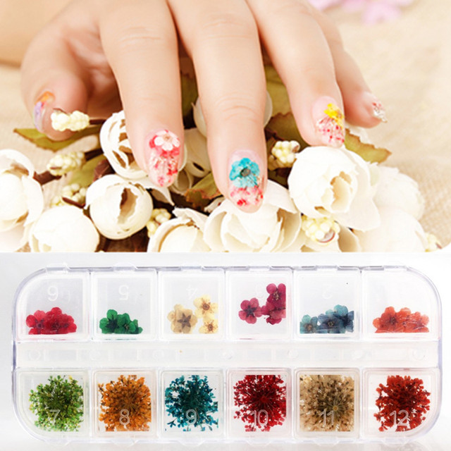 Candy Lover Nail Art Decorations Real Dry Dried Flowers For UV Gel Nails DIY  Design Manicure