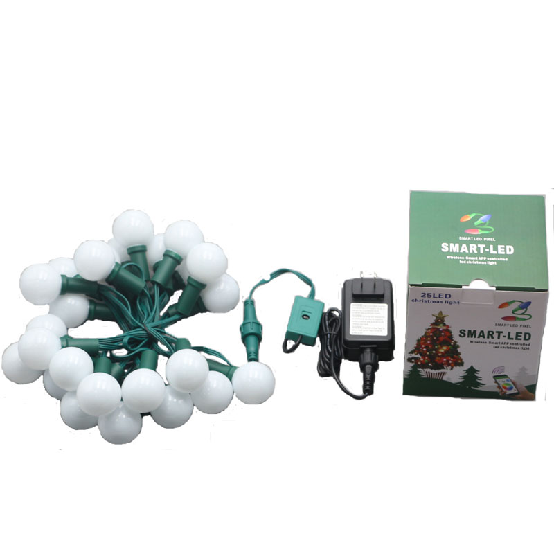 Smart LED WS2811 DC12V G40 Globe String Lights with 25 white Bulbs,Indoor & Outdoor Light Decoration for Garden,Party,Wedding