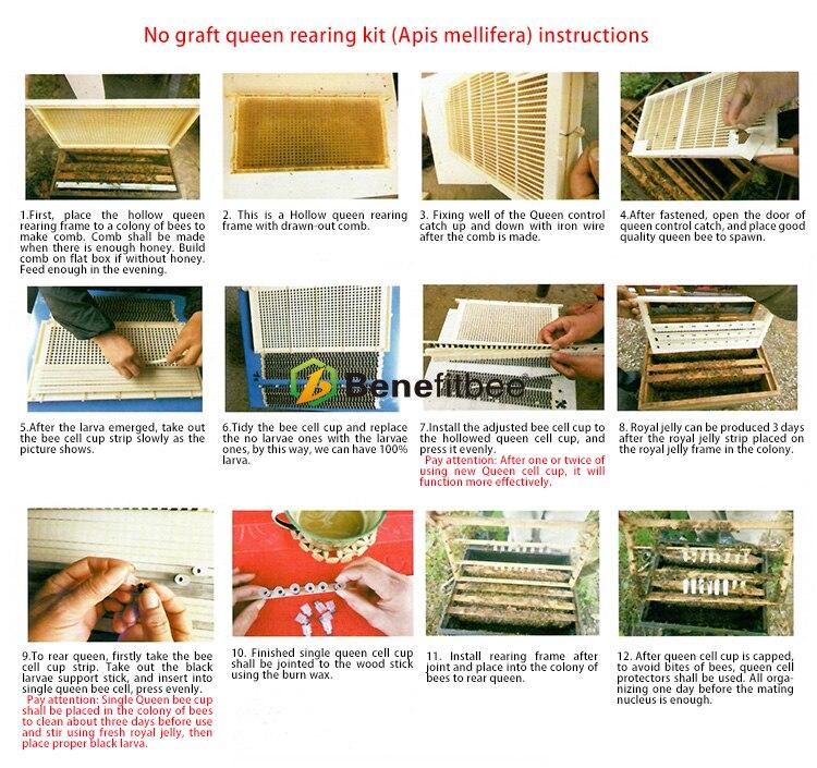Пчеловодная королева Rearing system пчела королева Rearing для Apis Mellifera горячая Распродажа высота quatlity