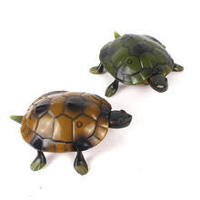 Buy pet baby turtles and get free shipping on AliExpress.com