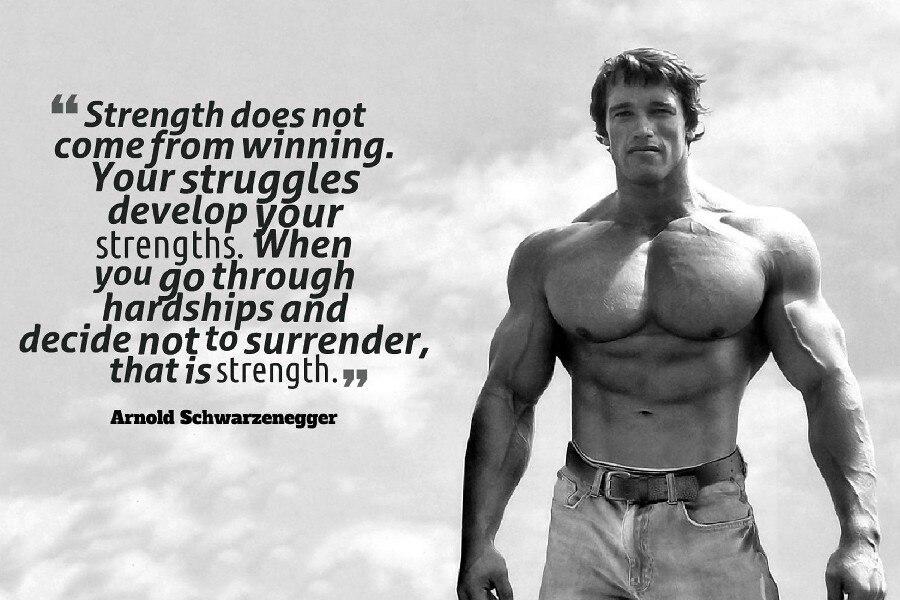 quote motivational Arnold Schwarzenegger Gym decoration ...