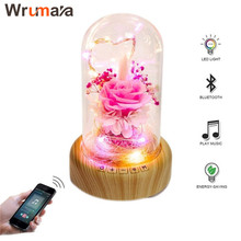 Wrumava Wishing Bottle LED Night Night Light Bluetooth Speaker Flowers USB Bedside Table lamp for Birthday Party Festival Room