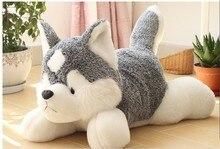 new stuffed lovely husky dog plush lifelike husky dog doll throw pillow toy about 55cm