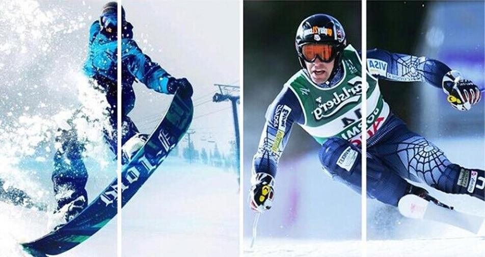 skiing model