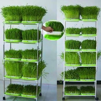 Bandeja de jardín de semillas de Hidroponia bandeja de semillero de doble capa