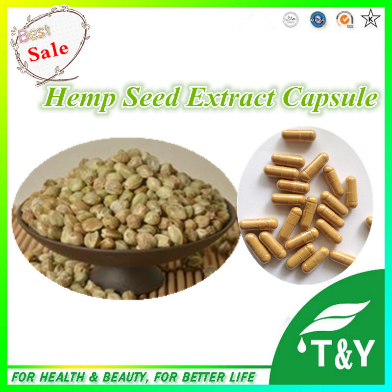 Health Care Product Hemp Seed Extract Capsule 10:1 500mg*1000pcs