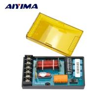 2 Unids Aiyima Coche Divisor 2 Way Crossover Filtros de Audio Hi-Fi Altavoz Divisor De Frecuencia