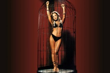 Living room bedroom home wall modern art decor canvas poster Leah Remini cage women model sexy babes brunette bikini S076