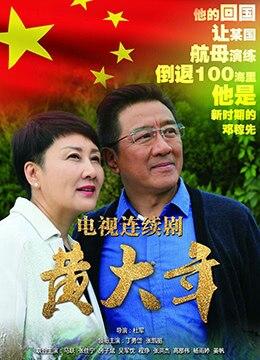 《黄大年》2017年中国大陆剧情,传记电视剧在线观看