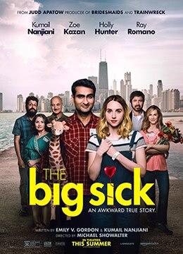 《大病》2017年美国喜剧,爱情电影在线观看