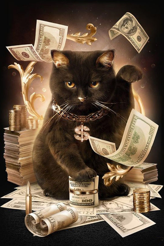 Cat With Cash Pattern Diamond Embroidery DIY Needlework 5D Diamond Painting Cross Stitch Full Drill Rhinestones Painting cheap