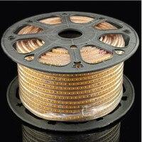 Новая модель 100 м 3014 светодио дный полосы AC220V 120 светодио дный/метр IP67 Водонепроницаемый Открытый Сад света белый/теплый белый/синий с ЕС plug