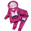 2PCS/SET(OUTWEAR+PANTS) Minnie Girls Clothes Set Thicken Warm Fabric Autumn/Winter Clothes For Little Girls 2-5 Years CC051-CGR3