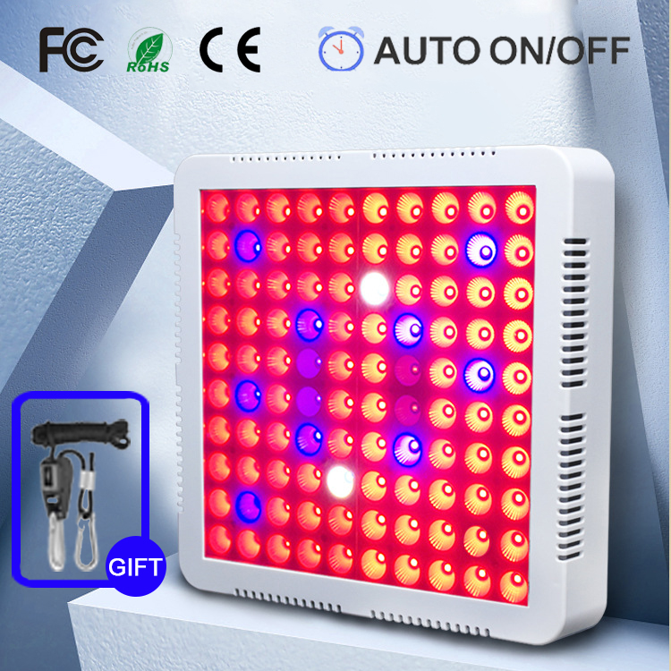 2000W 100 LED Timer Led Grow Lights For Indoor Plants Full Spectrum Garden Tent Flower Seed Growing Lamp Fitolampy Fito Phyto