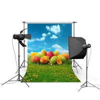 2017 new spring easter photography backdrops eggs chiken new born baby children photographic background Easter Day P0352