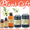Free Shopping 100 Plant Material Extracts Honeysuckle Extract Repair Skin Care Acne Anti Inflammatory Convergence