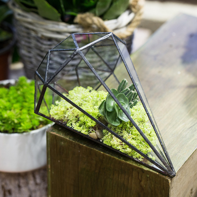 Handmade Diamond Shape Glass Tabletop Plant Terrarium Decorative Planter  Glass DIY Succulent Container Flower Pot Decorative