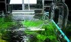 Aquarium filter glas...