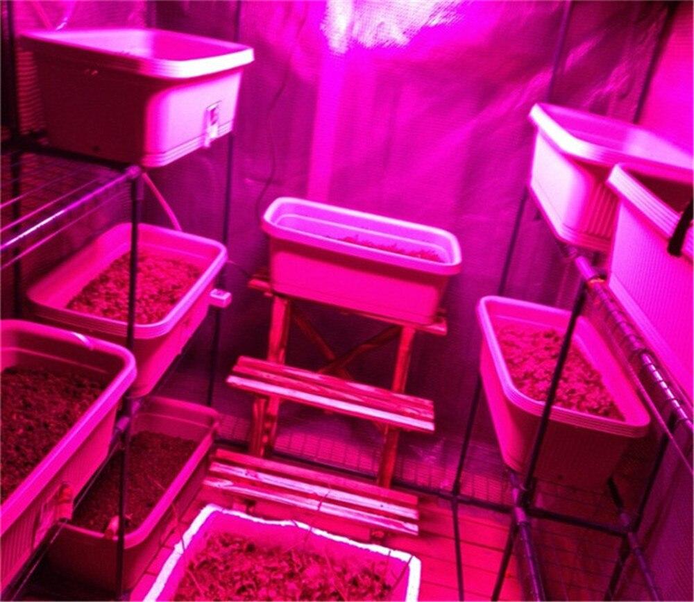 300 Вт под руководством Завода Растут Освещение площадь завода светать 288 шт. светодиодов светать светодиодных гидропоники парниковых LED завод лампа роста