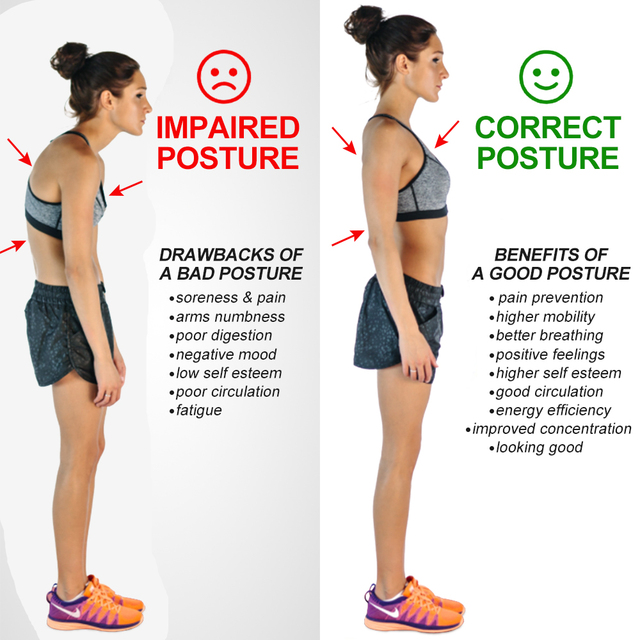Posture Correcting Support