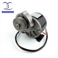 250w 24 v36v DC gear brushed motor with belt pulley, MY1016Z2
