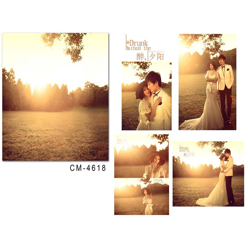Wedding Photography Backdrops Sunny WoodsPhotographic Background Flowers and Grassland Backdrops for Photographic Studio