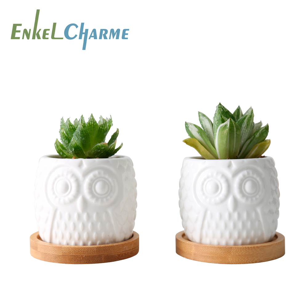 2 Set Ceramic Succulent Flowerpot White Owl Flowerpots With Bamboo Tray Holder Cute Cactus Flower Pots