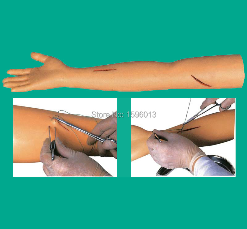 все цены на Advanced Suture Practice Arm model, Surgical Suture Arm model онлайн