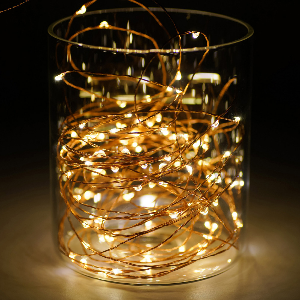 3m 10ft 30 Leds Aa Battery Copper Wire String Light With