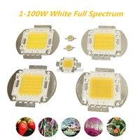 높은 전원 led cob 칩 1 w 3 w 5 w 10 w 20 w 30 w 50 w 100w380-840nm 식물 램프 흰색 전체 스펙트럼 빛 수족관 램프 수생 성장