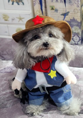 Funny-Pet-Costume-Suit-Dog-Clothes-Puppy-Uniform-Outfit-Cat-Clothing-Nurse-Doctor-Policeman-Pirate-Cowboy (4)