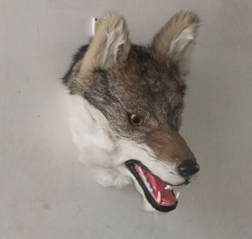 creative simulaiton wolf head toy lifelike furnishing articles wolf head model doll gift about 31x21x26cm creative simulaiton standing peacock toy polyethylene