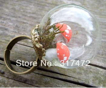 Free shipping!!! 25mm ball 15mm open Clear Glass Vial Pendant &Ring set Vial Forest Girl Series Jewelry Making