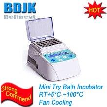 MINIB-100F цифровой лабораторный мини-инкубатор для сухой ванны(вентилятор охлаждения) термостатическое устройство