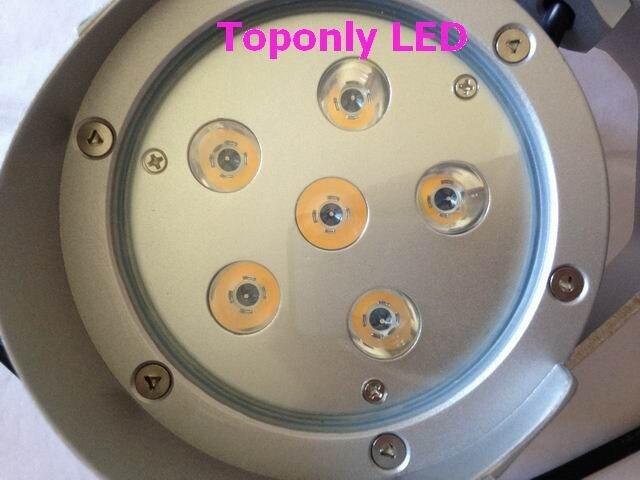 IP66 высокое качество 12 Вт edison светодиодная лампа газон, светодиодное освещение сада, трава светодиодные, DC12-24V, белого цвета, безопасный и про…