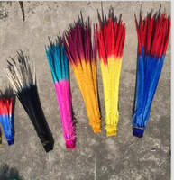 Free shipping 300pcs each style Pheasant Tail Feather 45-50cm 18-20 inches Double colors pheasant Feathers