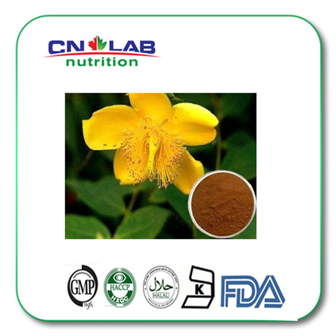 Kosher/Halal/ISO Hypericins St.John's Wort Extract /Hypericum perforatum extract powder kosher halal iso low price high quality epimedium leaf extract epimedium extract horny goat weed extract powder factory price