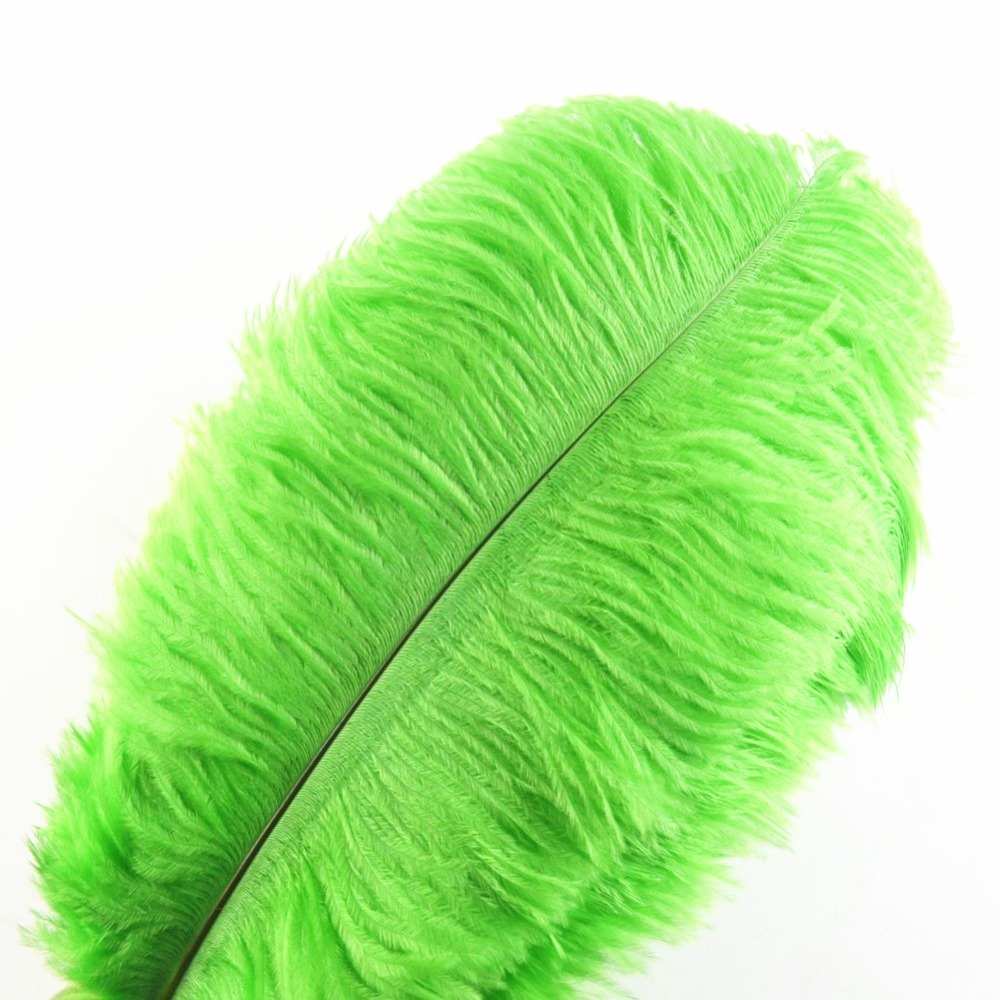Image 5 - Hot 100 Pcs 30 35cm beautiful cheap colored ostrich feathers diy 