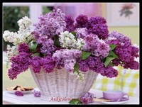 Needlework for embroidery DIY French DMC High Quality Counted Cross Stitch Kits 14 ct Oil painting Lilac Basket