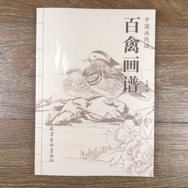 Bird - Chinese Line Drawing Hua Pu / Jian / Line Drawing Bird Feathers Portfolio Bird Manuscript Copy Template