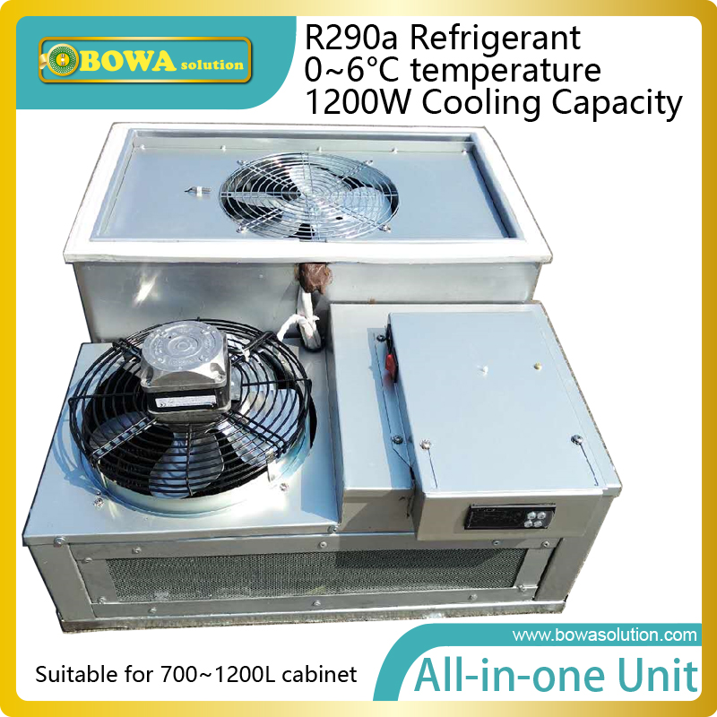 1200W R290a all-in-one removable refrigeration unit for 1000L bottle coolers or beverage coolers or wall chillers 1560w monoblock refrigeration unit suitable for 10m3 beverage cooler or bottle cooler room