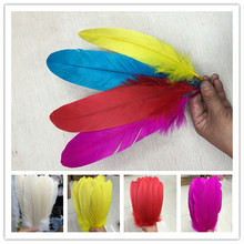 Newest Color Selected 50pcs/lot Beautiful Colorful Eagle Bird Feathers 10-12inches/25-30cm For DIY Craft Decoration