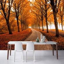 Best Value Maple Tree Wallpaper Great Deals On Maple Tree