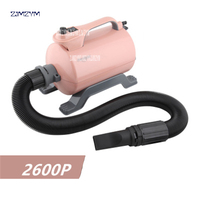 2600W Hair Dryer Cat Dog Hair Dryers Pet Grooming Tools 220V/50hz Enhanced Version Of High Power Mute For Large Spaniel SHD 2600